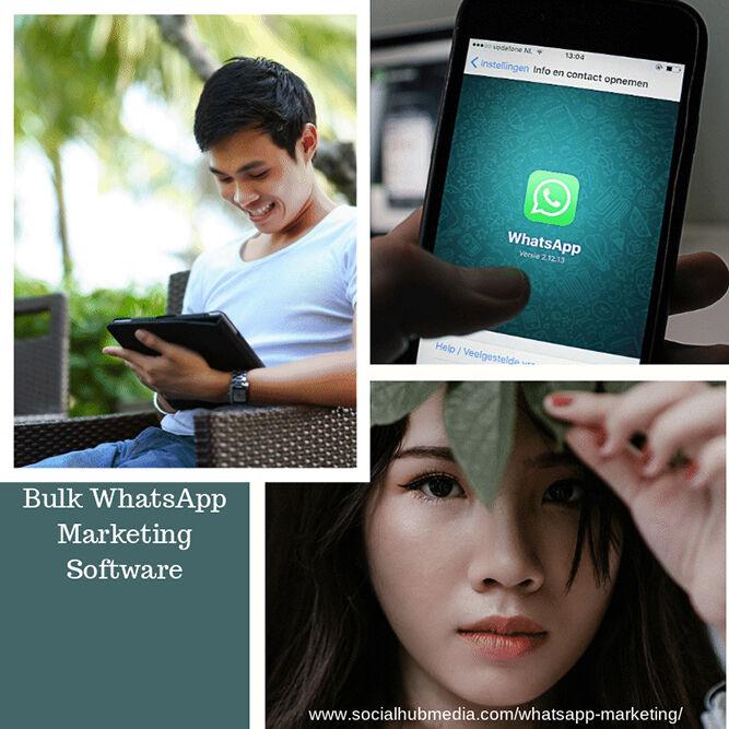 WhatsApp messenger App   Bulk WhatsApp Marketing Messenger