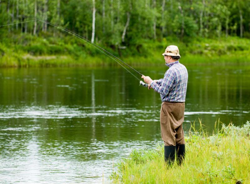 рожевка рыбалка