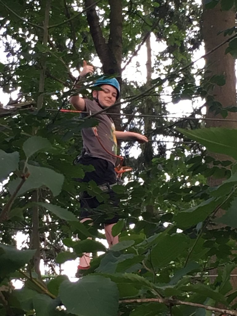 Boy in trees