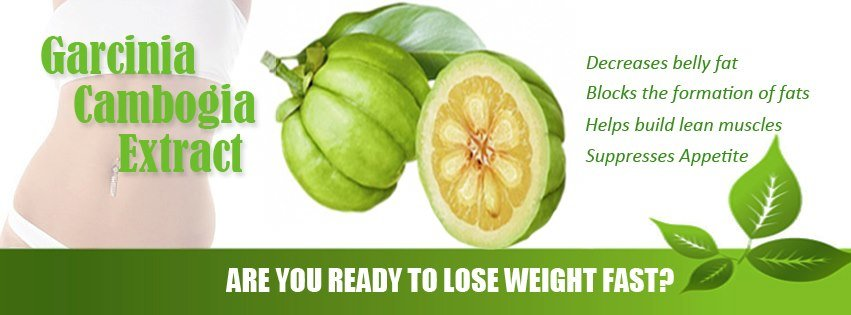 Create own weight loss program picture 8