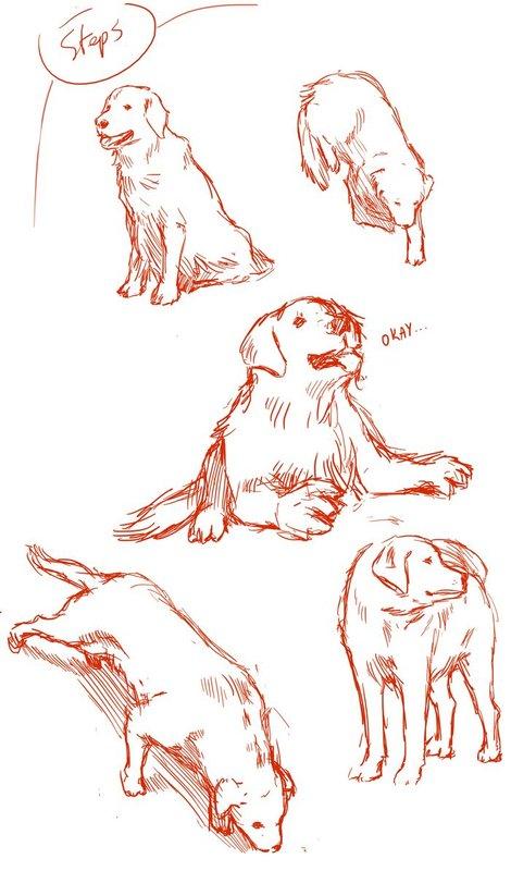 Topic commun - How to draw anything 5XTmDHqwpKHkU60085dMef
