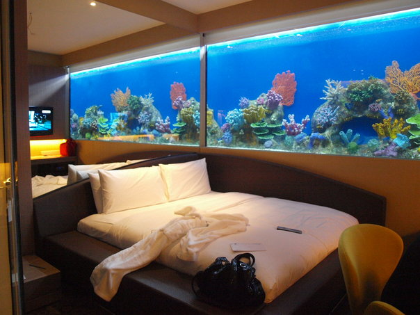 Manila bloggers at h20 hotel azrael 39 s merryland blog for Fish tank bedroom ideas
