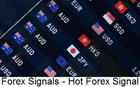 No loss forex signals