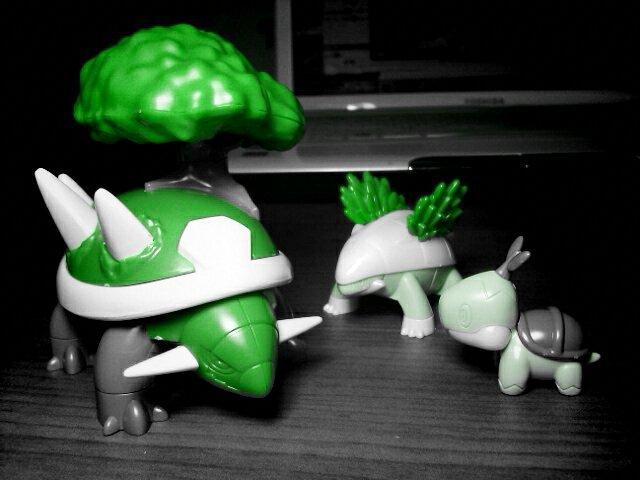 【其他】[模型] 草苗龟 树林龟 土台龟 睡觉的皮卡丘